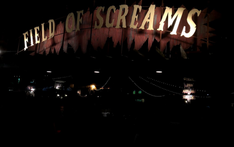 Field of Screams — A Student Review