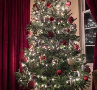 Choosing a theme for your tree can be a great inspiration point.  The author's tree, for example, features plaid ribbon as a major theme.